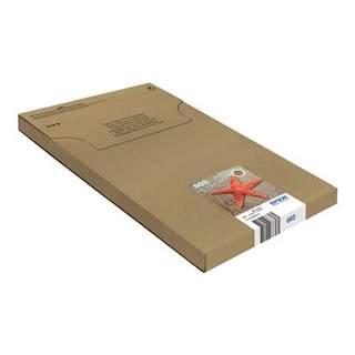 C13T03U64510 – Epson 603 Multipack Easy Mail Packaging