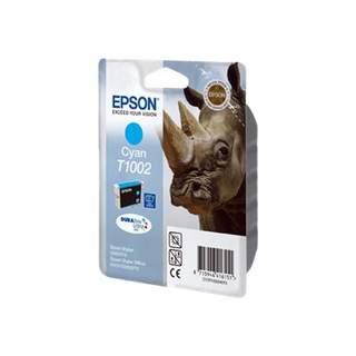 C13T10024010 – Epson T1002